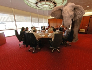 elephant-in-the-room1